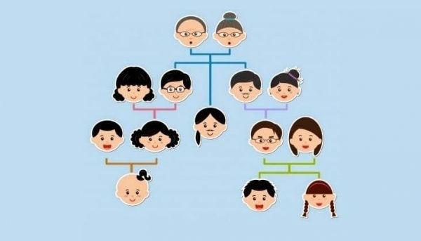 Árbol Genealógico, genograma, historia familiar, Kusisami