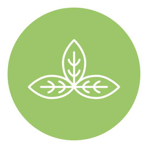 Productos 100% natural | ecoamigables